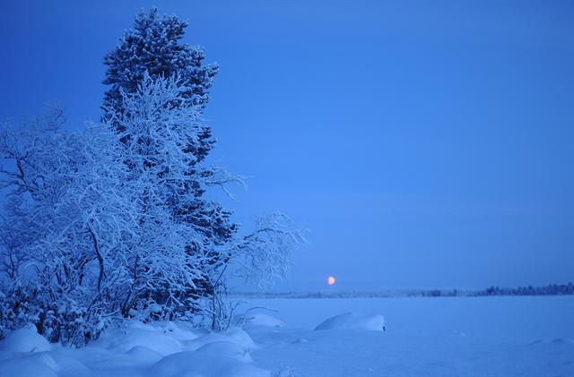 Polar night, polar twilight photo
